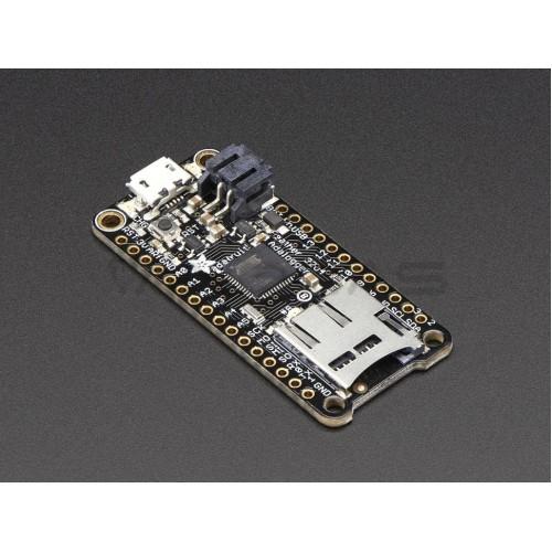 Adafruit Feather 32u4 Adalogger - Suderinamas su Arduino