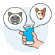 Smart devices for pets