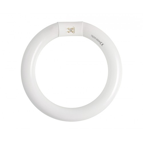 Apvali fluorescencinė lempa T9 G10q frosted  230V AC 22W 1400lm 210mm / 30 mm cold white (6400K)
