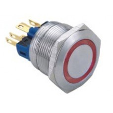 Vandal proof push button switch W22F11ER24/S